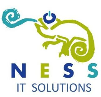 © NESS               IT Solutions